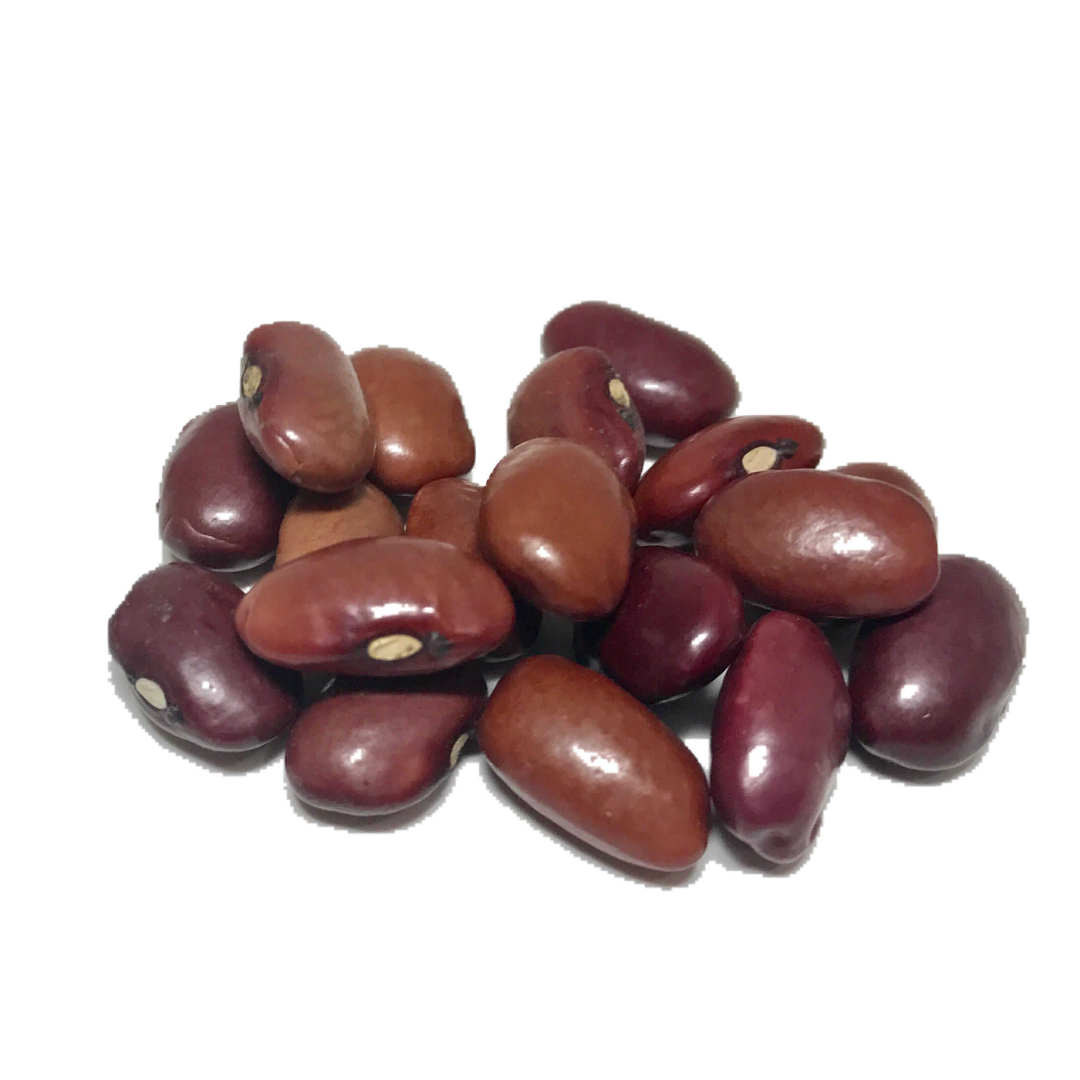 how to cook dry red beans