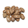 Pinto Dry Beans | Shady Side Farm Holland Grand Rapids Michigan | Local Organic